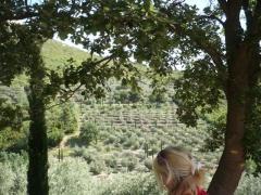 provence,garlaban,aubagne,promenade,geneviève briot,méditation