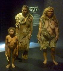 musée des confluences,lyon,andré cohen aknin,andrée chedid,femme florès,sapiens,néandertal,flammarion,lucy,origine